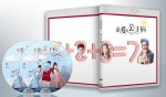 蓝光连续剧 25G 《亲爱的,公主病》 2碟