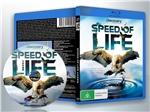 蓝光纪录片 50G 《BBC 生命的速度》 +带国配