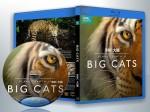 蓝光纪录片 25G 14111 《BBC:大猫》   (2018)