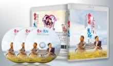 蓝光连续剧 25G 《爱情最美丽》 3碟 张国立 蒋雯丽 2014