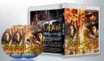 蓝光连续剧 25G 《魔剑生死棋》  (2008)  2碟